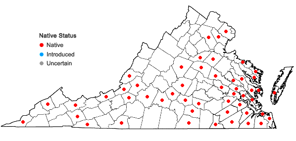 Locations ofOdontoschisma sphagni (Dicks.) Dumort. in Virginia