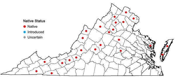 Locations ofOenothera parviflora L. in Virginia
