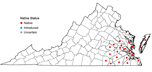 Locations ofOldenlandia uniflora L. in Virginia