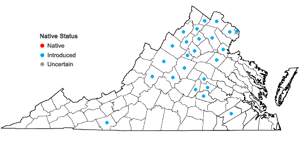 Locations ofOplismenus undulatifolius (Ard.) P. Beauv. in Virginia