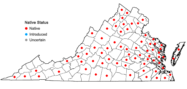 Locations ofOpuntia humifusa (Raf.) Raf. var. humifusa in Virginia
