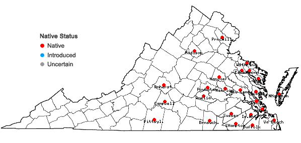 Locations ofOpuntia mesacantha Raf. ssp. mesacantha in Virginia