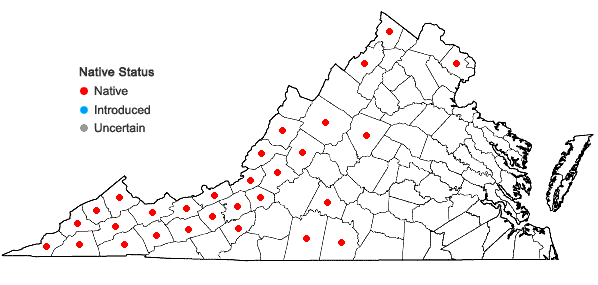 Locations ofOxalis grandis Small in Virginia