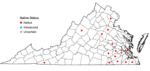 Locations ofPanicum virgatum L. var. cubense Griseb. in Virginia