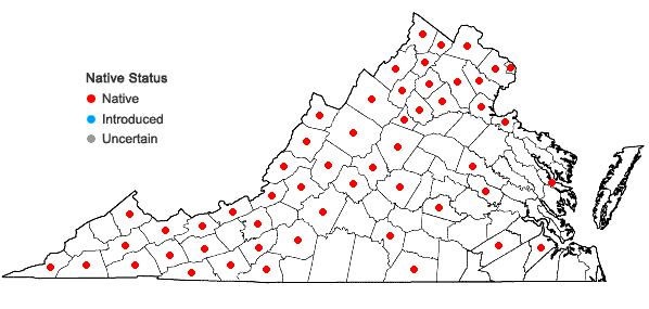 Locations ofParonychia canadensis (L.) Wood in Virginia