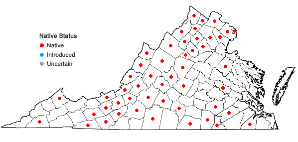 Locations ofParonychia fastigiata (Raf.) Fern. in Virginia