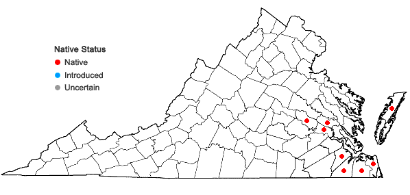 Locations ofPaspalum distichum L. in Virginia
