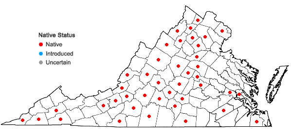 Locations ofPaspalum pubiflorum Rupr. ex Fourn. in Virginia