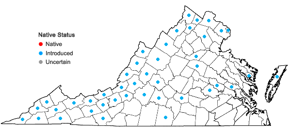 Locations ofPastinaca sativa L. in Virginia