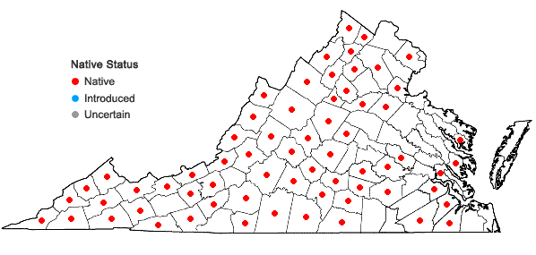 Locations ofPedicularis canadensis L. in Virginia