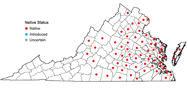 Locations ofPeltandra virginica (L.) Schott in Virginia