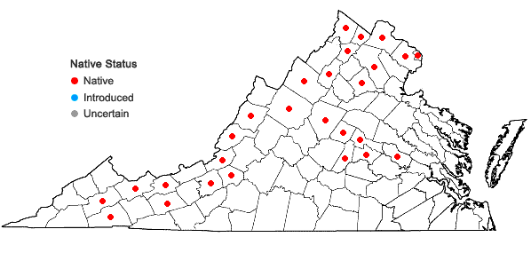 Locations ofPersicaria amphibia (L.) Gray in Virginia