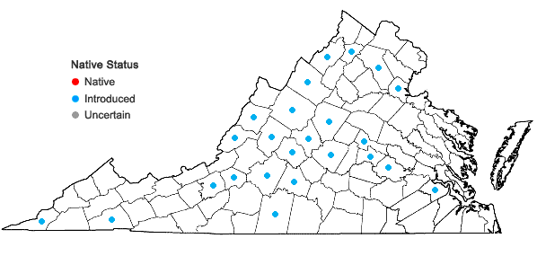 Locations ofPetrorhagia prolifera (L.) P.W. Ball & Heywood in Virginia