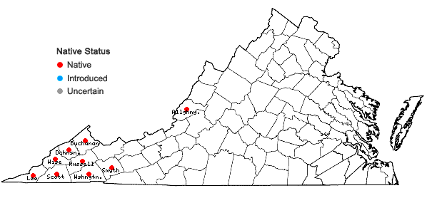 Locations ofPhacelia bipinnatifida Michx. in Virginia