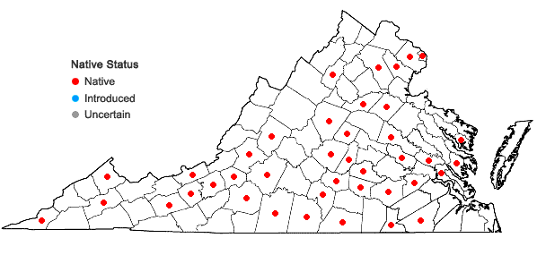 Locations ofPhaseolus polystachios (L.) BSP in Virginia