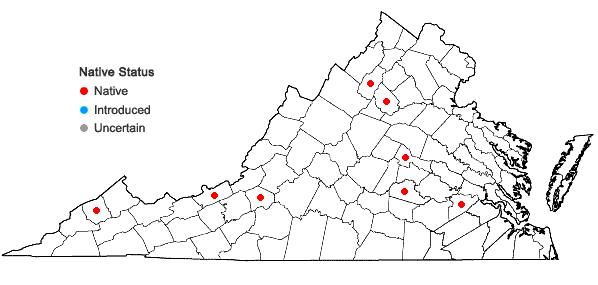 Locations ofPhilonotis longiseta (Michx.) E. Britton in Virginia