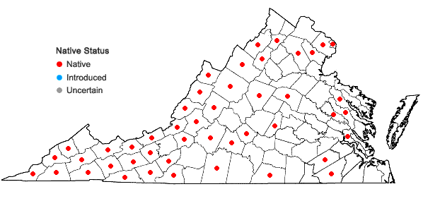 Locations ofPhlox maculata L. in Virginia