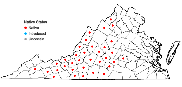Locations ofPhlox ovata L. in Virginia