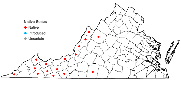 Locations ofPhlox stolonifera Sims in Virginia