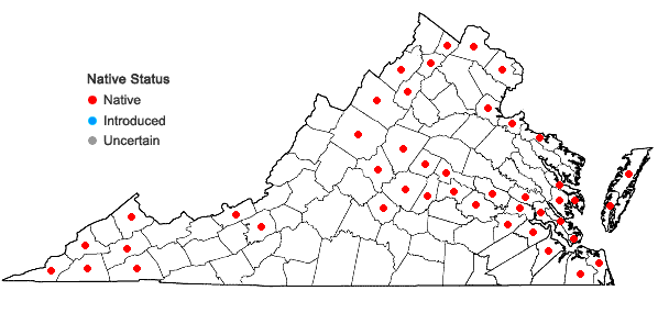 Locations ofPhyla lanceolata (Michx.) Greene in Virginia