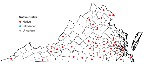 Locations ofPhysalis pubescens L. in Virginia