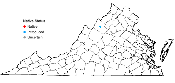 Locations ofPicea abies (L.) H. Karsten in Virginia