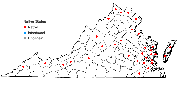 Locations ofPilea fontana (Lunell) Rydb. in Virginia