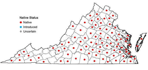 Locations ofPinus echinata Miller in Virginia