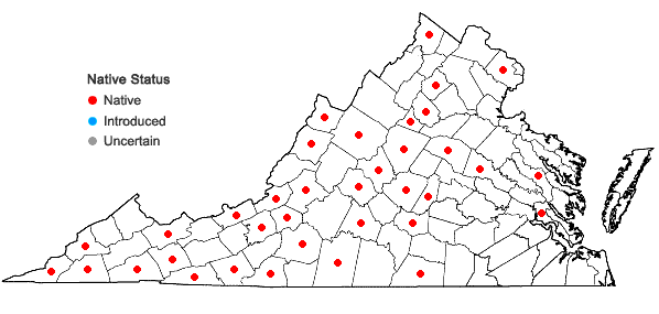 Locations ofPlagiochila porelloides (Torr. ex Nees) Lindenb. in Virginia