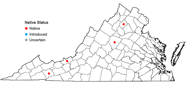 Locations ofPlagiochila sullivantii Gottsche ex A. Evans in Virginia