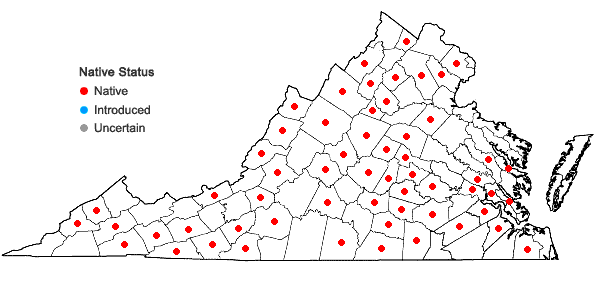 Locations ofPlagiomnium ciliare (Müll. Hal.) T.J. Kop. in Virginia