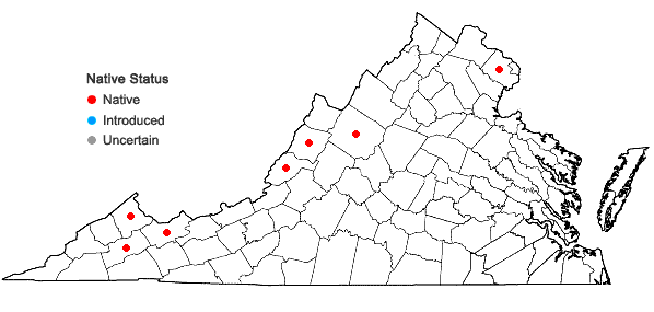 Locations ofPlagiomnium ellipticum (Brid.) T.J. Kop. in Virginia