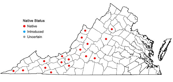 Locations ofPlatanthera flava (L.) Lindl. var. herbiola (R.Br. ex Ait.f.) Luer in Virginia
