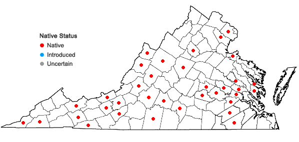 Locations ofPlatanthera flava (L.) Lindl. in Virginia