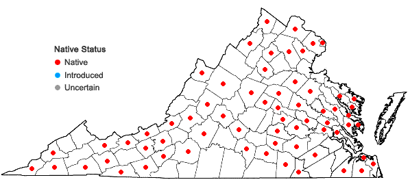 Locations ofPlatanthera lacera (Michx.) G.Don in Virginia