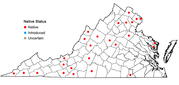 Locations ofPlatanthera peramoena (Gray) Gray in Virginia