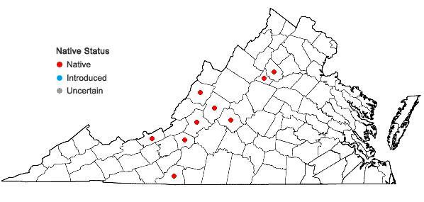 Locations ofPlatydictya confervoides (Brid.) H.A. Crum in Virginia