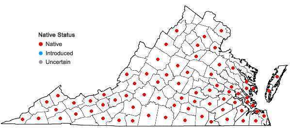 Locations ofPleopeltis polypodioides (L.) Andr. & Windham ssp. michauxiana (Weath.) Andr. & Windh. in Virginia