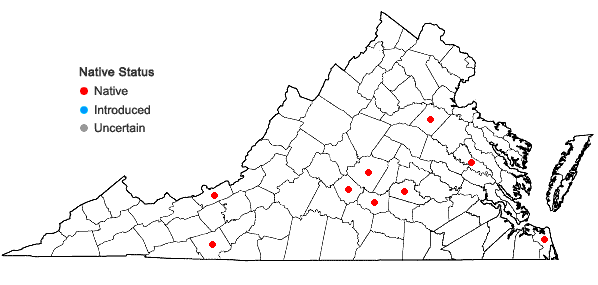 Locations ofPleuridium subulatum (Hedw.) Rabenh. in Virginia
