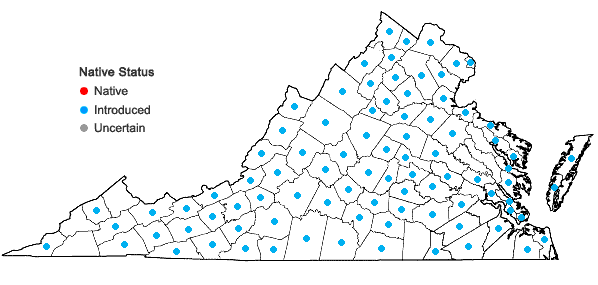 Locations ofPoa pratensis L. in Virginia
