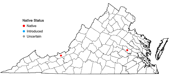 Locations ofPohlia camptotrachela (Renauld & Cardot) Broth. in Virginia