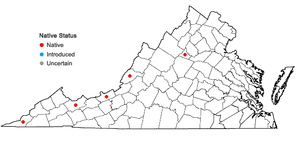 Locations ofPohlia cruda (Hedw.) Lindb. in Virginia