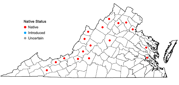 Locations ofPohlia wahlenbergii (F. Weber & D. Mohr) A.L. Andrews in Virginia