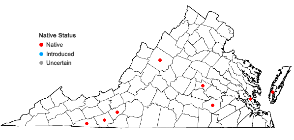Locations ofPolygala cruciata L. var. aquilonia Fern. & Schubert in Virginia