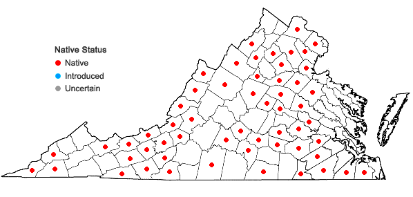 Locations ofPolygala sanguinea L. in Virginia