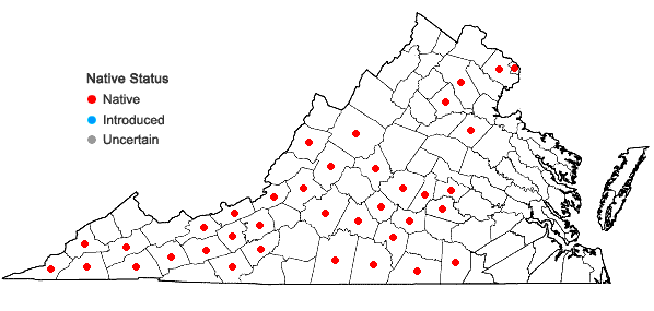 Locations ofPolygala senega L. in Virginia