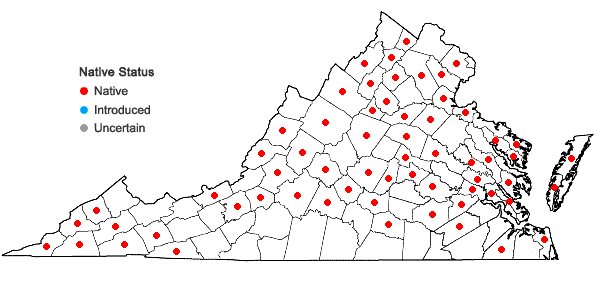 Locations ofPolytrichastrum ohioense (Renauld & Cardot) G.L. Sm. in Virginia