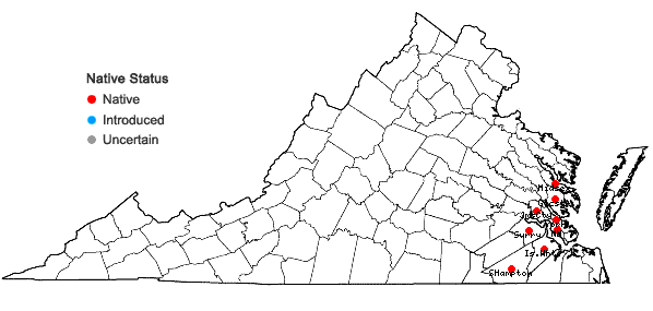 Locations ofPonthieva racemosa (Walt.) C. Mohr in Virginia