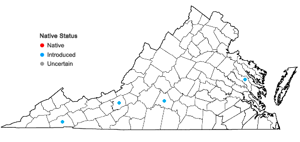 Locations ofPopulus balsamifera L. in Virginia
