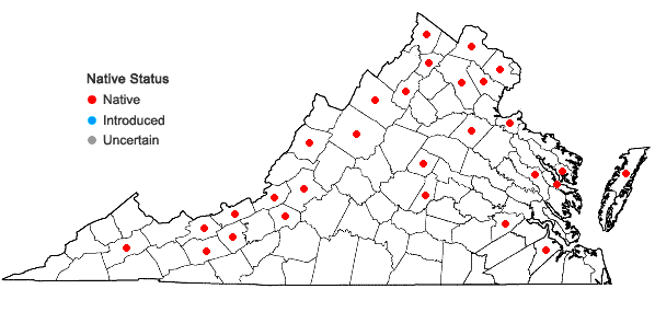 Locations ofPotamogeton foliosus Raf. var. foliosus in Virginia